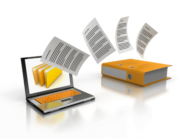 SAP DMS (Document Management System)